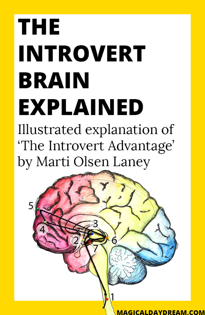 The introvert brain explained - Magical Daydream | illustrated explanation of the book 'The introvert advantage' by Marti Olsen Laney, includes explanation of introvert research and neurotransmitters, chemical pathways. Click to read entire post en see all illustrations: it includes tips for introverts and understanding how to survive in an extravert world.