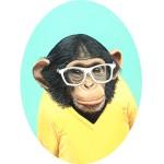 [3/7] Monkey portrait