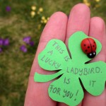 Lucky Ladybirds (a.k.a. what's in my Kindness Kit?)