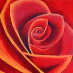 Past project: Red rose painting