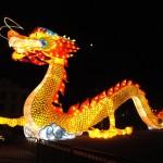 My dragon encounter