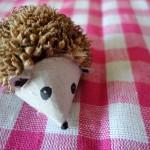 Tiny hedgehog
