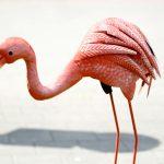 Flamingo Challenge